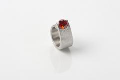 Ring-Ring-Ringsrum-2