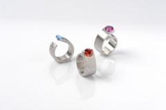 Ring-Ring-Ringsrum-4